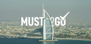 консалтинг проект для must2go